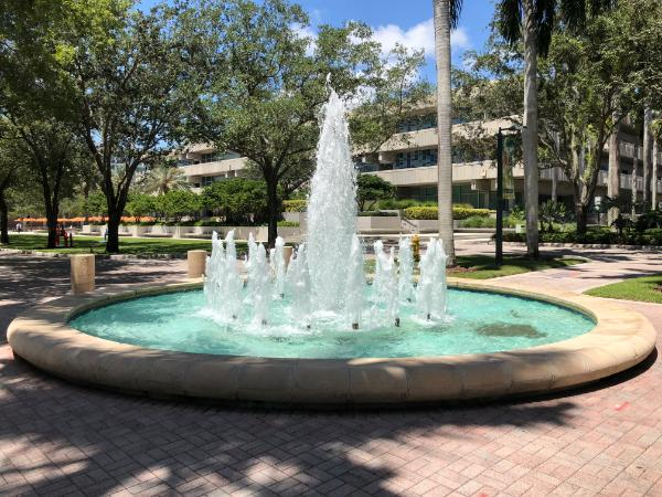 University Of Miami Chemistry
